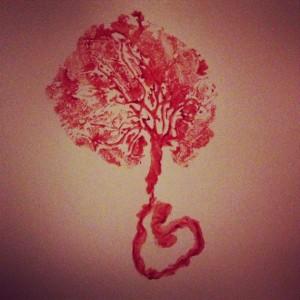 placenta1